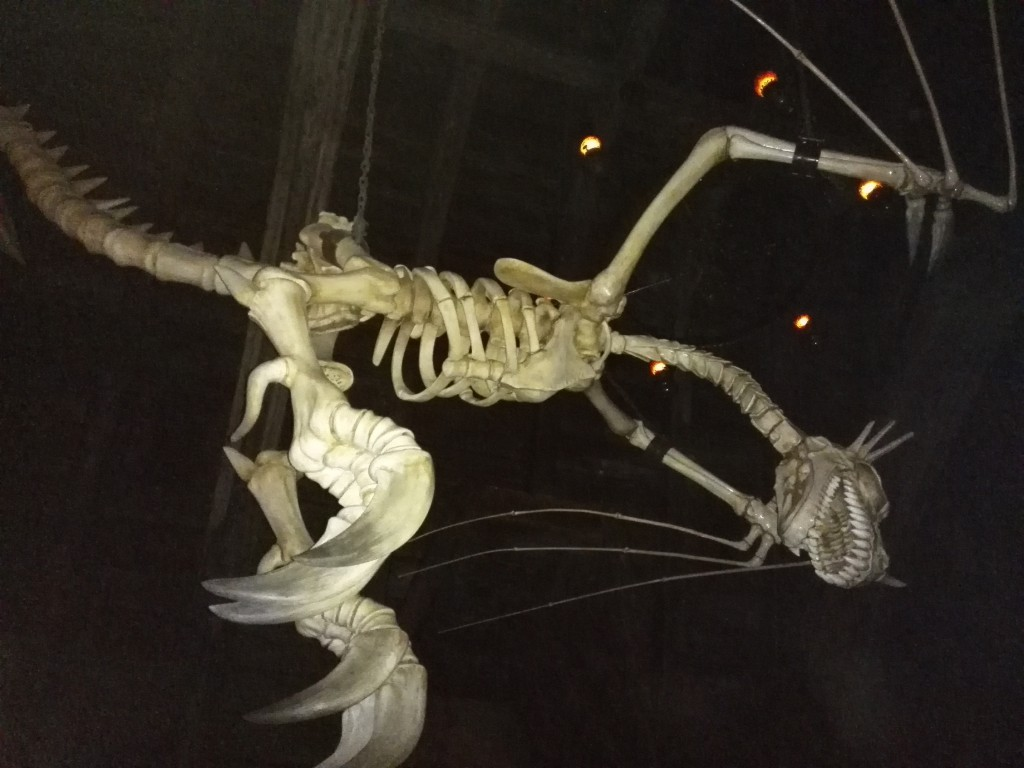 USJ ホグワーツ・キャッスルウォーク ドラゴンの骨