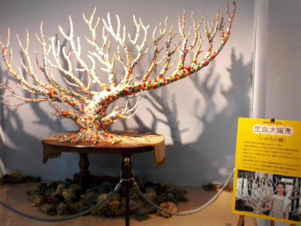 国立科学博物館 生命大躍進展 いのちの樹