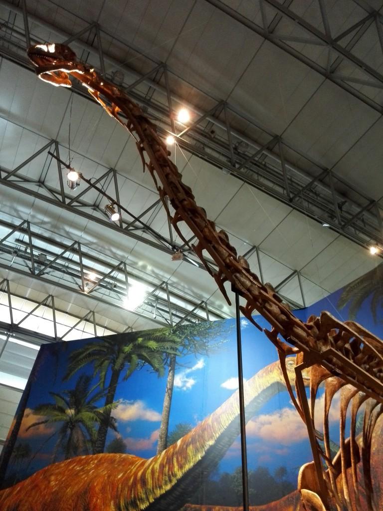 メガ恐竜展2015 トゥリアサウルス
