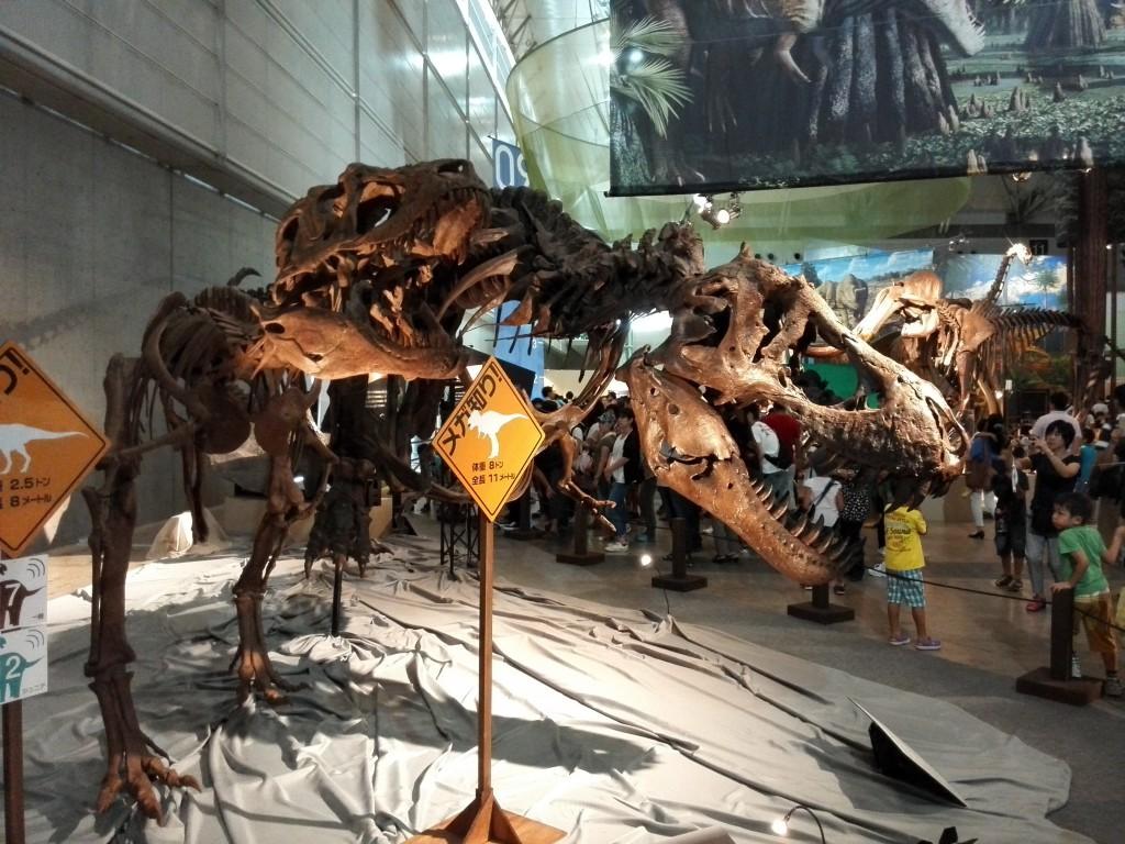 メガ恐竜展2015 ティラノサウルス レプリカ