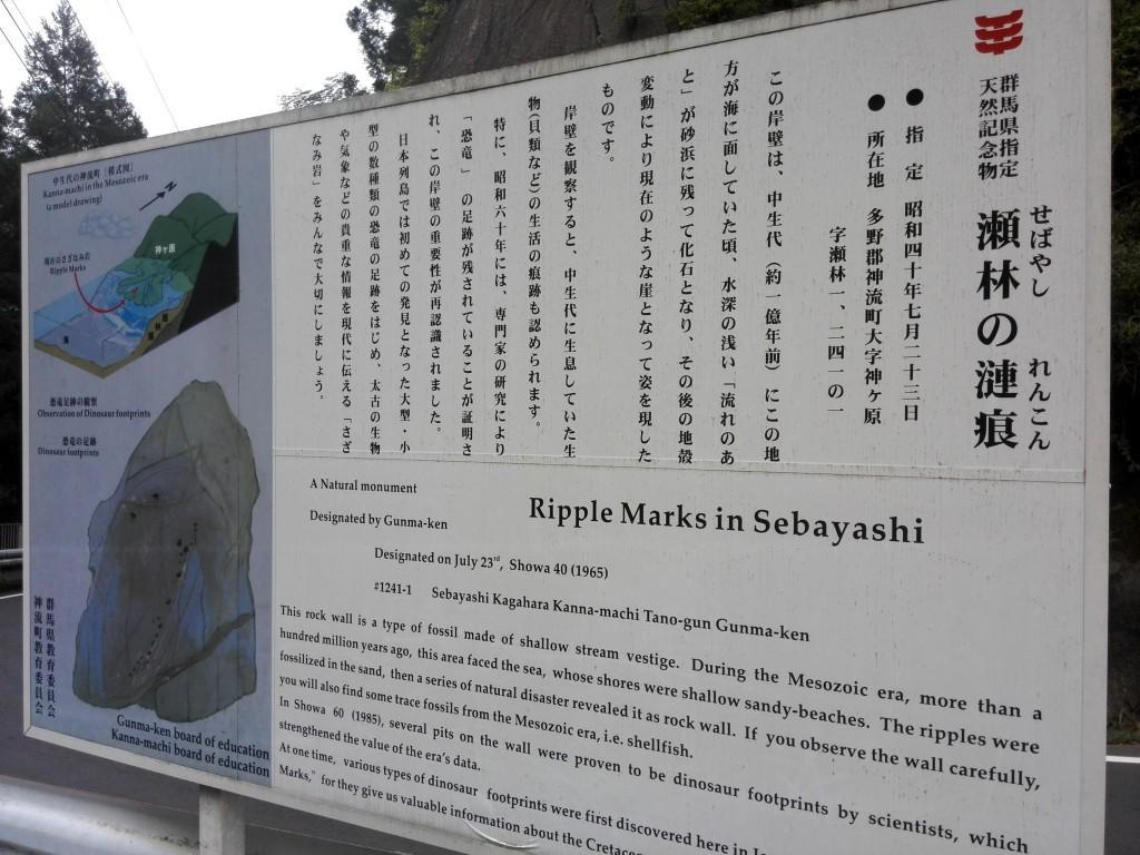 群馬県指定天然記念物 瀬林の漣痕