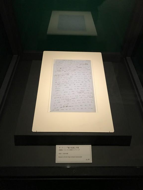 大英自然史博物館展 ダーウィン「種の起源」の手稿