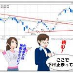 今週の株主優待はタマホーム!日本市場は暴落から立ち直れるか?